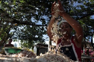 Gran parte de los alimentos que produce el país salen de pequeñas cooperativas.