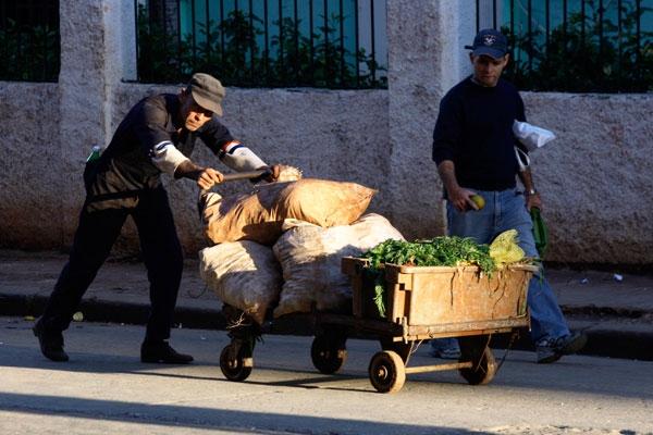 """El """"carretillero"""" pasa a ser """"carretillero o vendedor ambulante de productos agrícolas"""" en la nueva ampliación de los márgenes legales de algunos trabajos por cuenta propia"""
