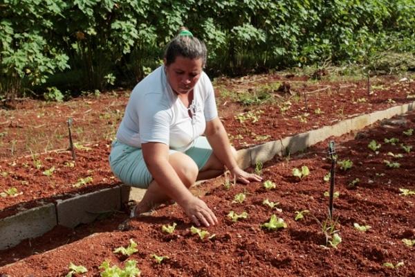 La cita estuvo dedicada a la situación de la mujer rural en Cuba.