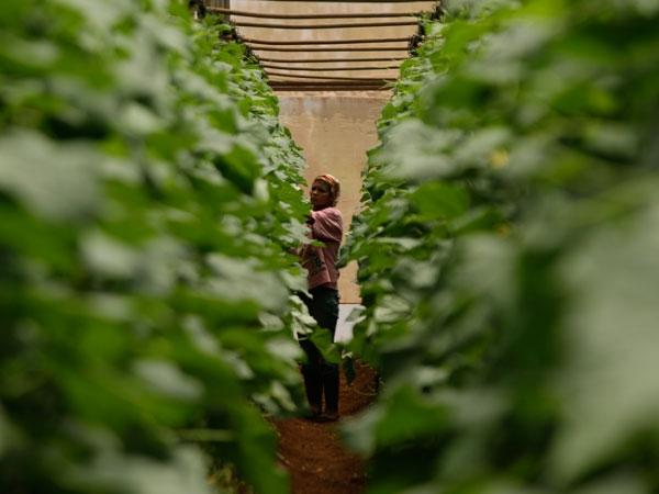Los programas de desarrollo humano a nivel local deben buscar el empoderamiento femenino, según especialistas.