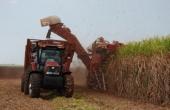 La reestructuración azucarera y el medioambiente en Cuba